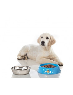 Comedero y bebedero para mascotas Hungry XL Brunner