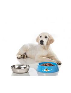 Comedouro e bebedouro XL Hunner para animais de estimação