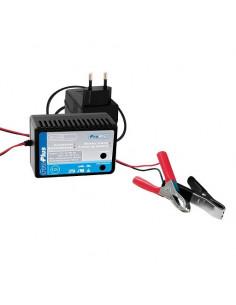 Cargador de batería de 12V de 10-250AH ProPlus
